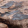Rock face in Devil's Kitchen, Canyonlands National Park, Utah.