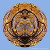 IMG_4298_20111101_Canon-EOS-50D-20111101-Kugel