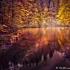 IMG_3644_20111008_Canon-EOS-50D_tonemapped-Bearbeitet