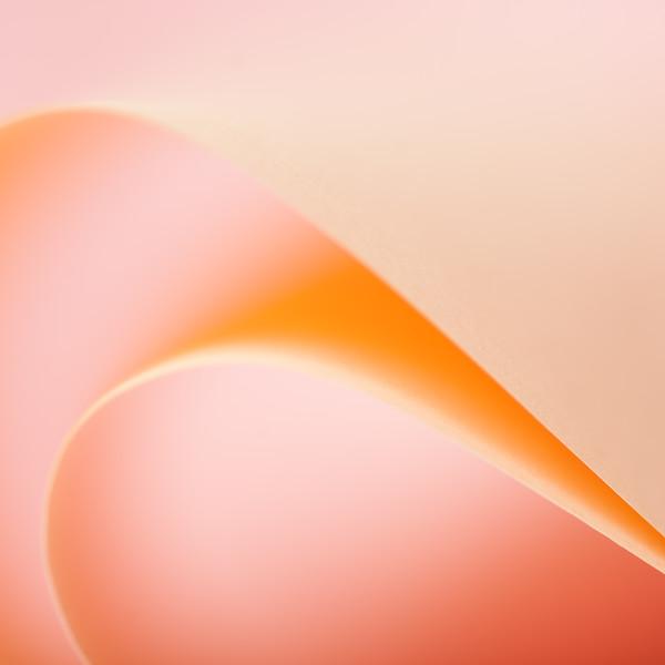 Paper Curl