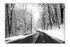 Christy Hill Road<br /> Gales Ferry, CT<br /> High Contrast