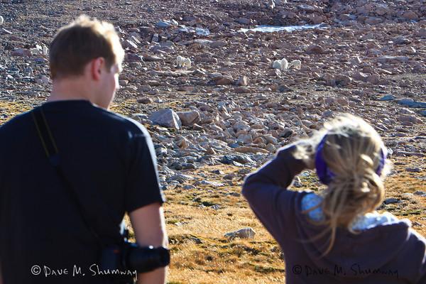 ART247/243 in Yellowstone (09/25-26/10)