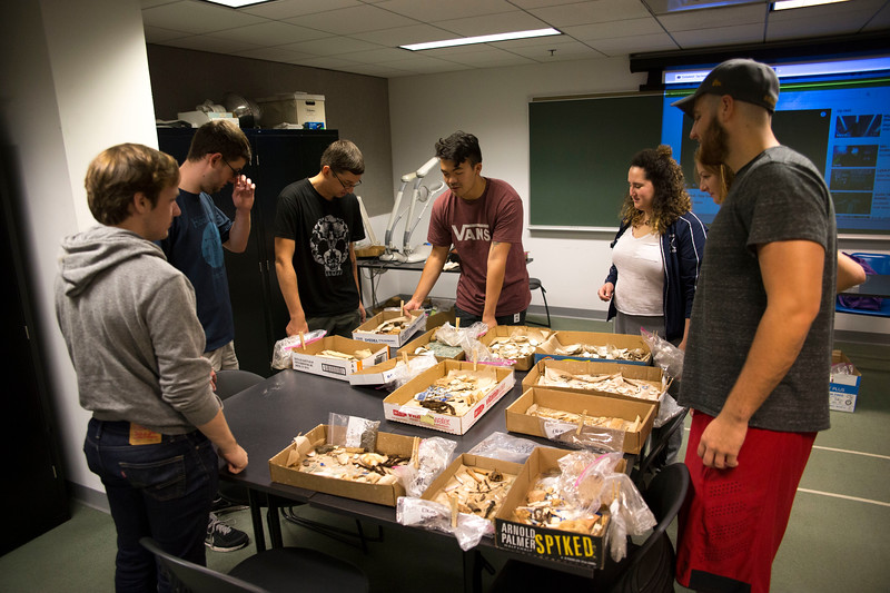 August 2, 2018 - Archeology Lab with Professor Marilyn Masson