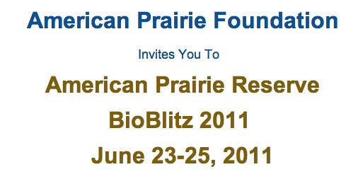 American Prairie Reserve BioBlitz (June 23-26, 2011)