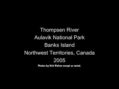 Thompsen River - Aulavik National Park (Banks Island, Northwest Territories Canada) 2005