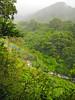 Montverde view 2