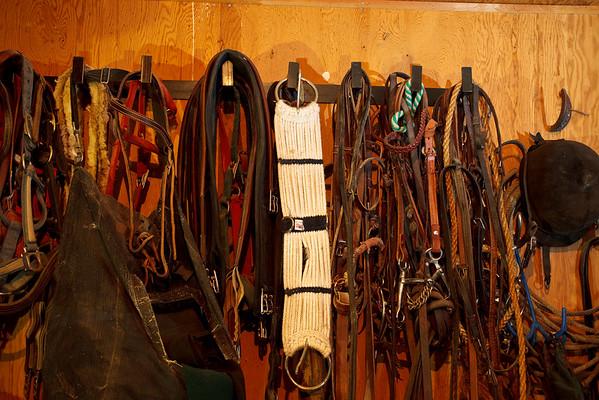 06-25-09 Intermountain Equestrian Center