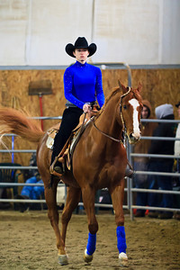 IRSA Horse Show