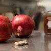 Pomegranate Extract Research