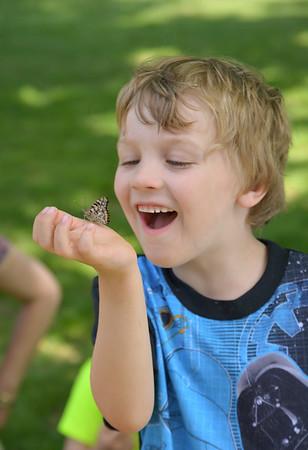Kindergarten Releases Butterflies