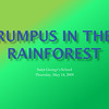 Rumpus in the Rainforest