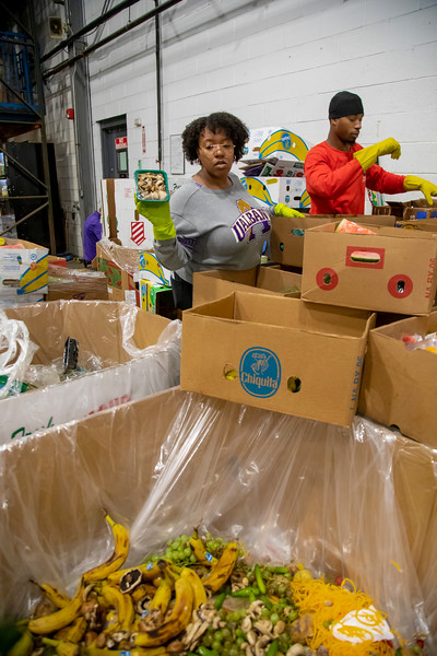 July 26, 2019 - School of Public Health working with the Regional Food Bank in Albany, NY