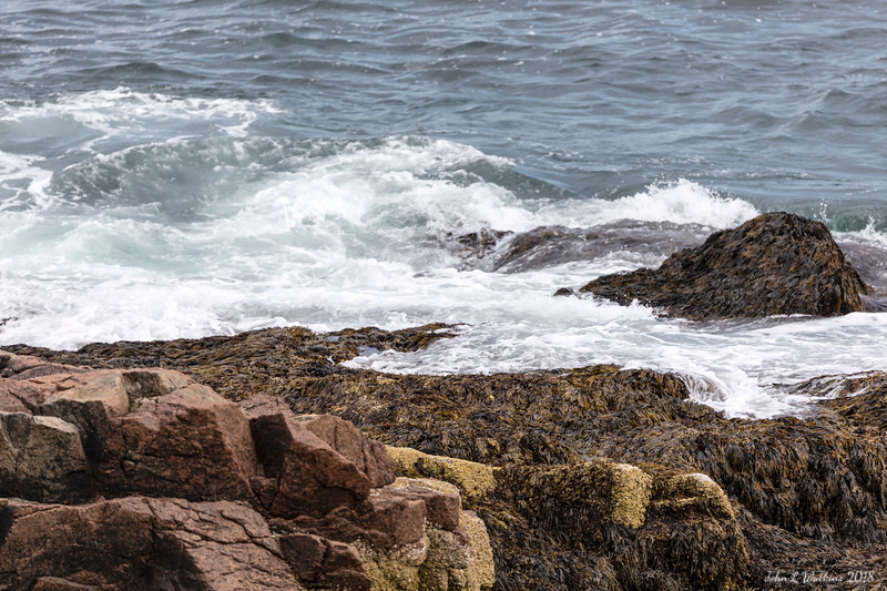 Surf Against the Acadia Shore