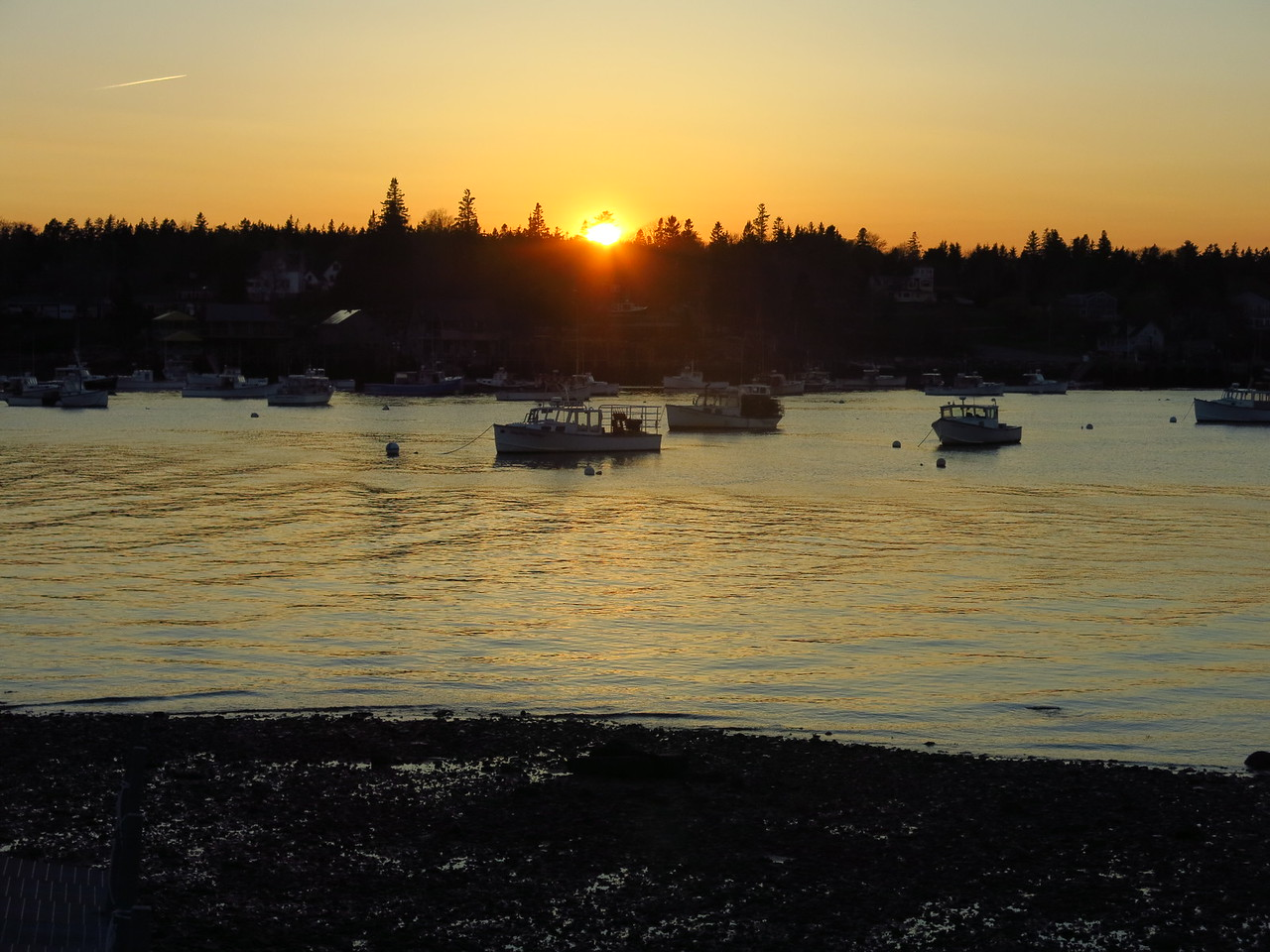 2016-05-11 Acadia (273)
