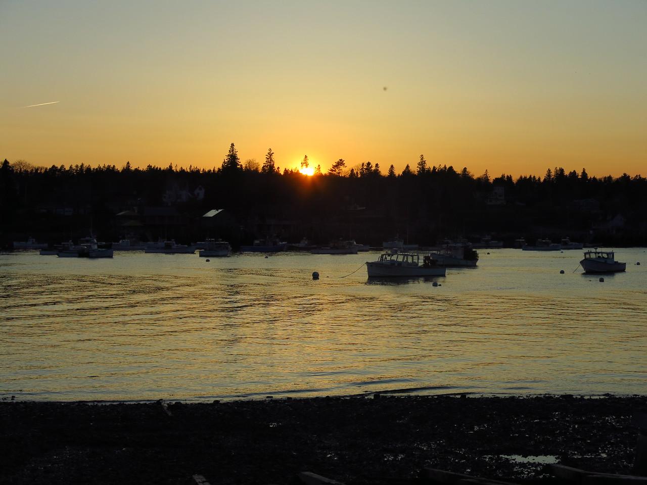 2016-05-11 Acadia (271)