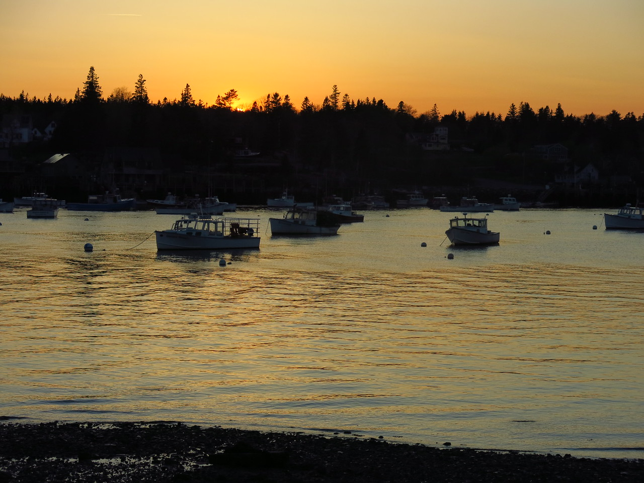 2016-05-11 Acadia (279)