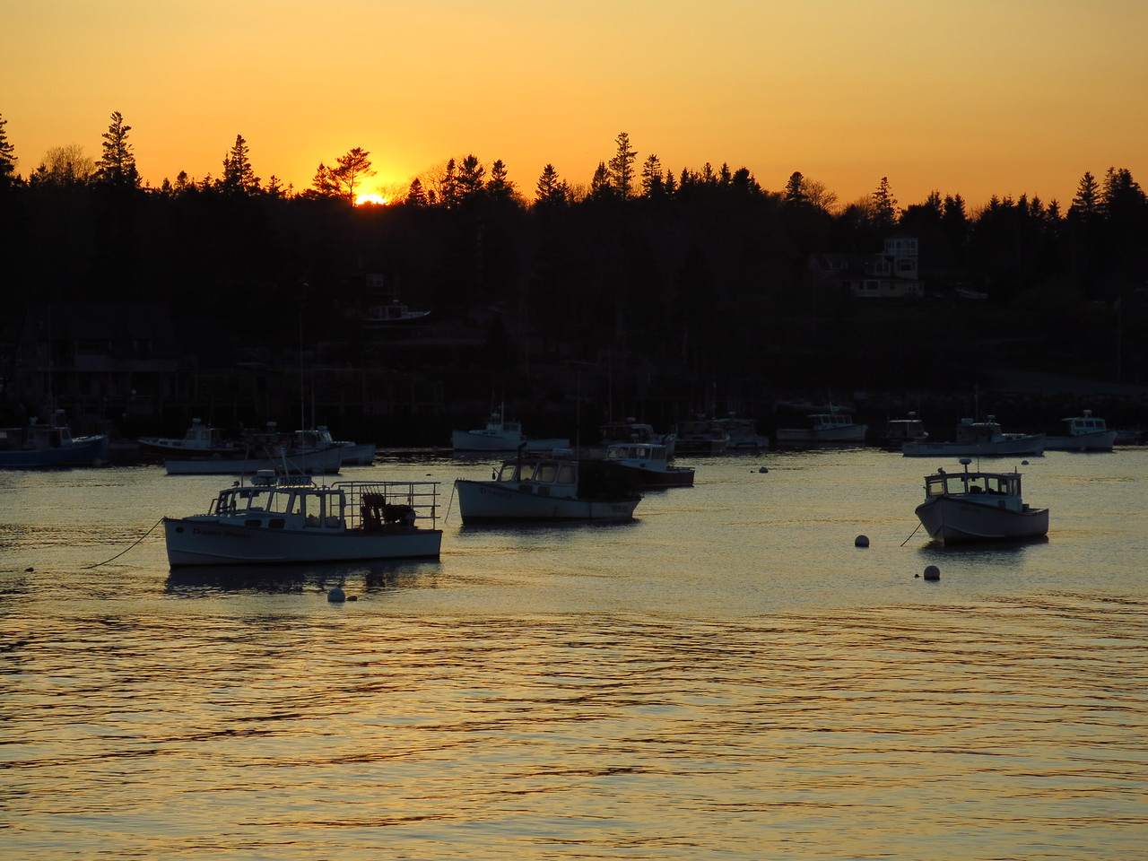 2016-05-11 Acadia (278)