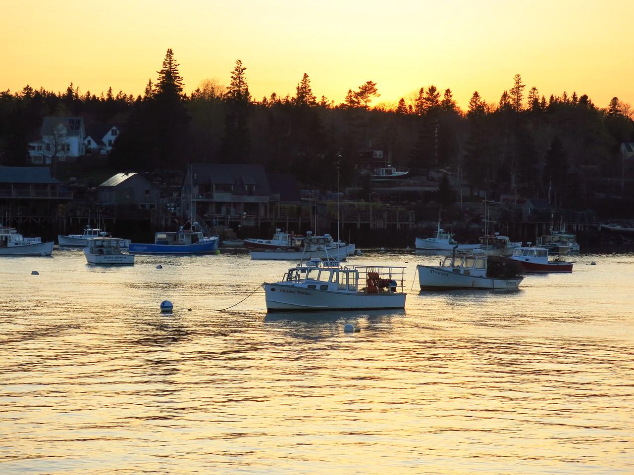 2016-05-11 Acadia (287)