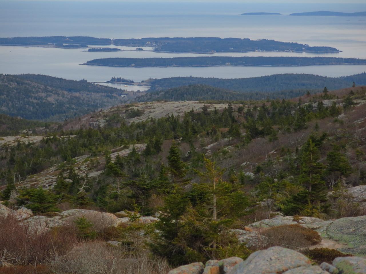 2016-05-12 Acadia (163)