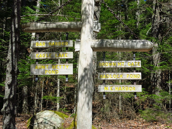 Carriage Road at Parkman Mtn, Acadia NP, May 10, 2016