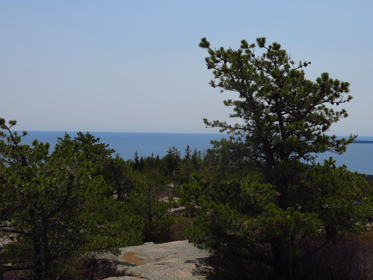 2016-05-12 Acadia (38)