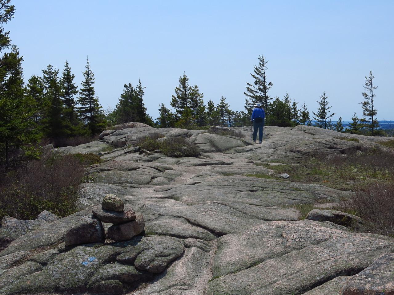 2016-05-12 Acadia (53)