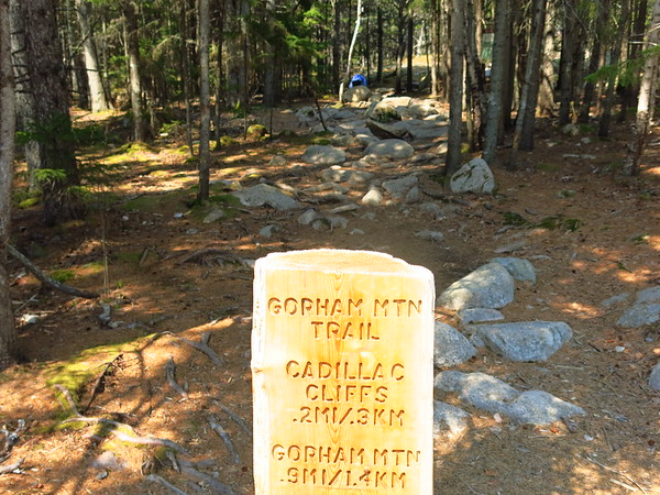 Gorham Mountain Trail, May 12, 2016