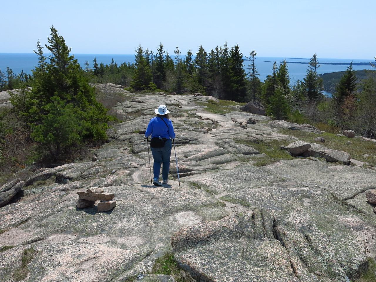 2016-05-12 Acadia (48)