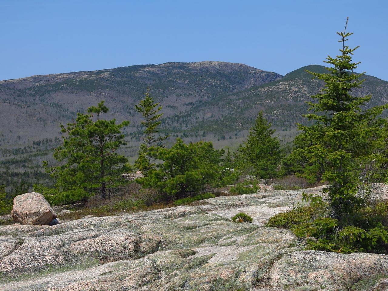 2016-05-12 Acadia (37)
