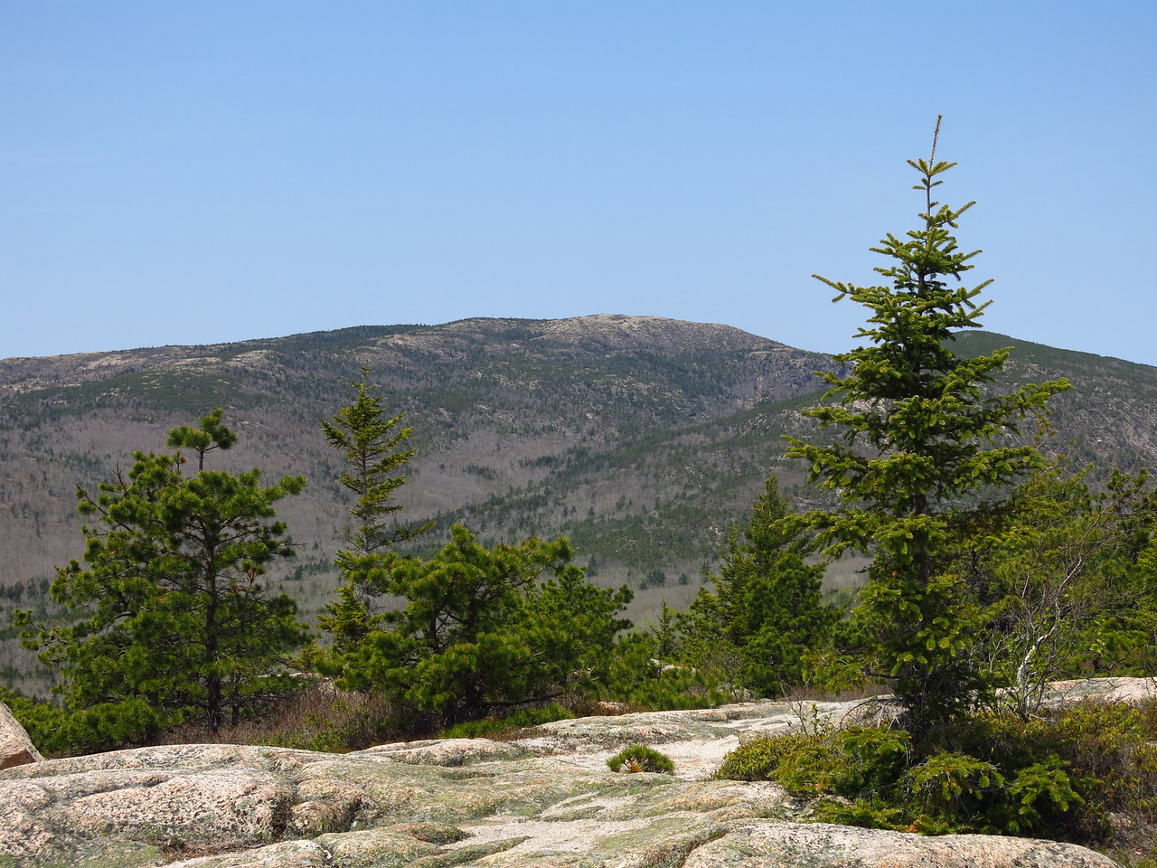 2016-05-12 Acadia (32)