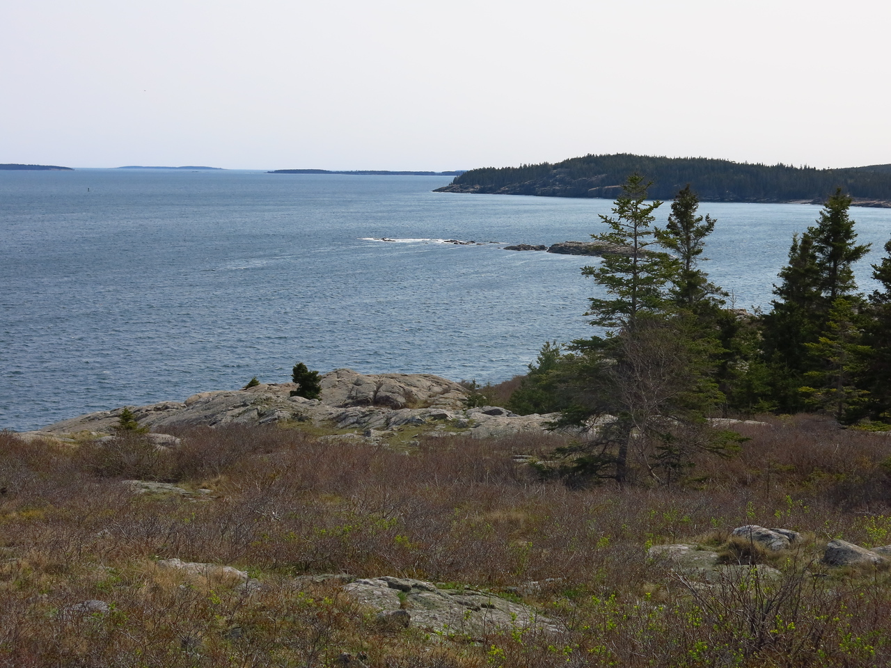 2016-05-12 Acadia (133)