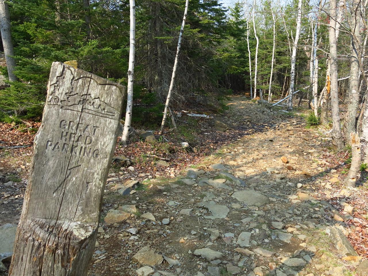 2016-05-12 Acadia (145)
