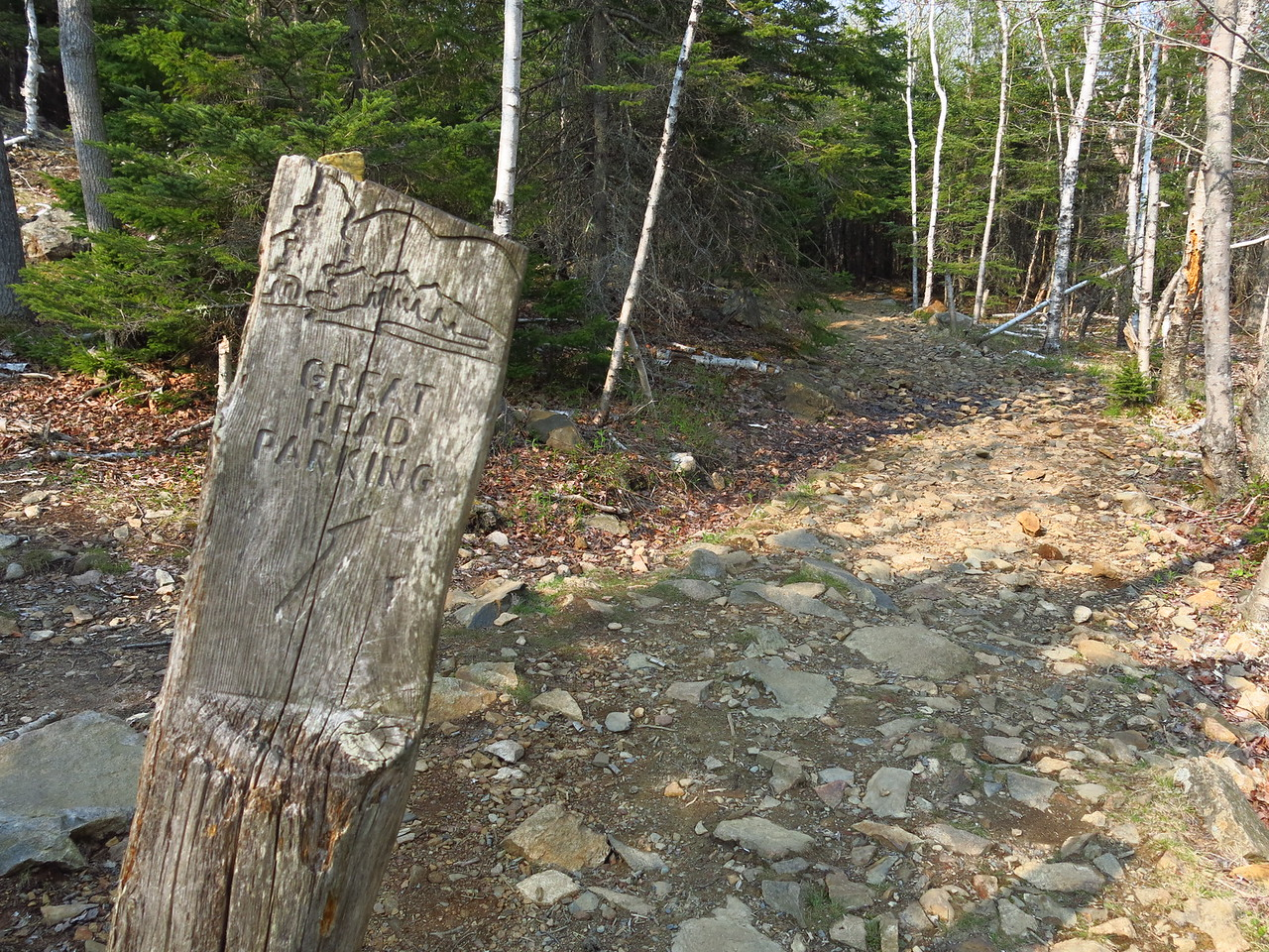 2016-05-12 Acadia (144)