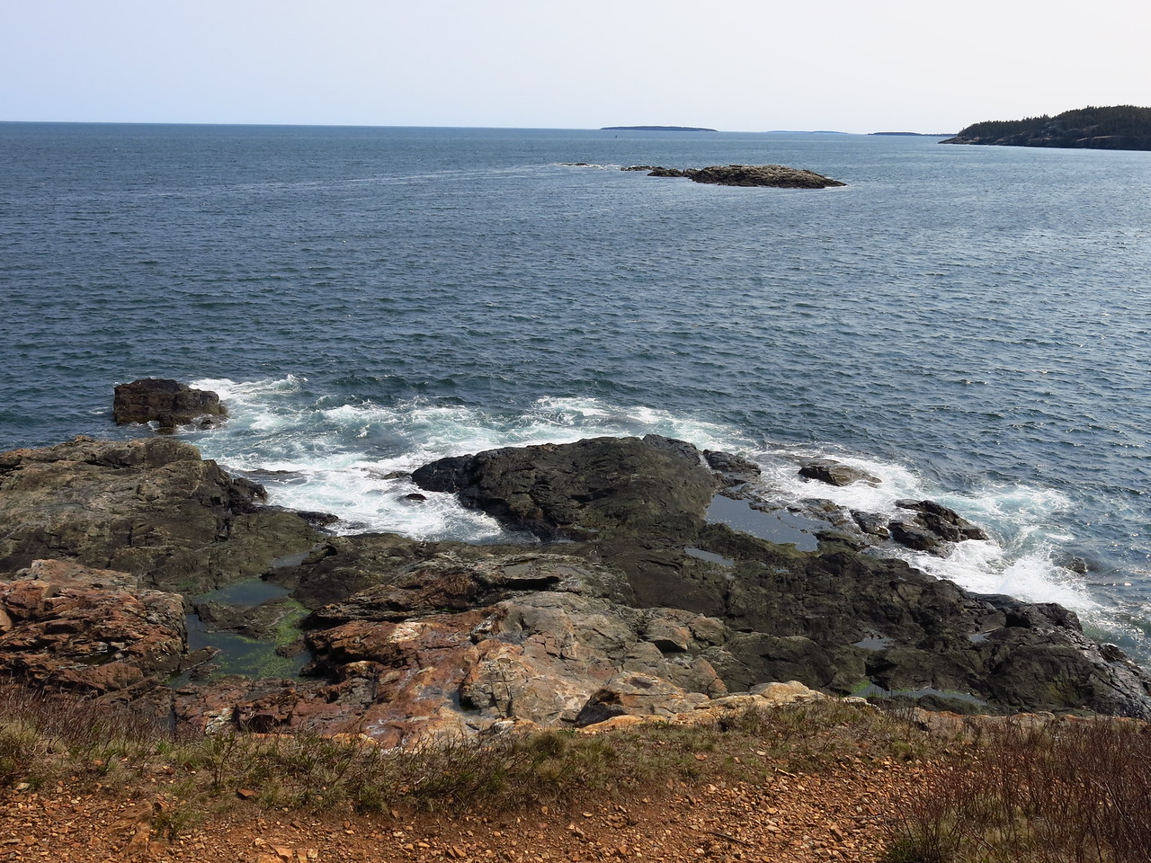 2016-05-12 Acadia (127)