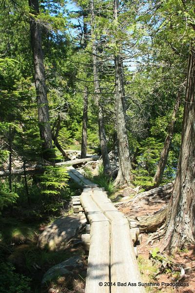 Jordan Pond Path 1