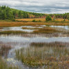 Tarn and Autumn Color near Duck Brook