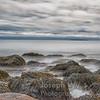 Hunter's Beach Seaweed