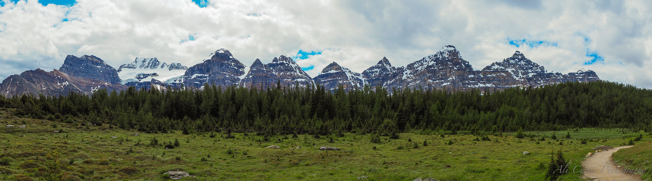 Larch Meadow, Banff National Park