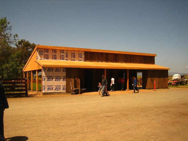 NEW STALLION BARN