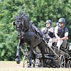 WORLD EQUESTRIAN GAMES FOR DRIVERS WITH DISABILITIES IN THE NETHERLANDS