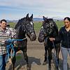 VOLUNTEERS TRAINING HORSES