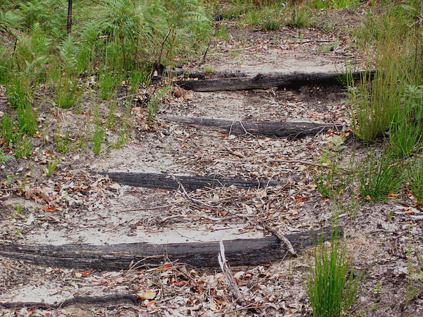 Burnt silt traps at beginning of track
