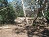 Golton gorge bush camp sprawl