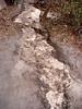 taipan spurt track erosion