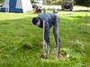 Arapiles Tree Watering and Mulching.