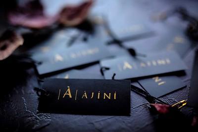 Ajini_Media-3