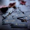 Ajini_Media-5