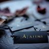 Ajini_Media-4