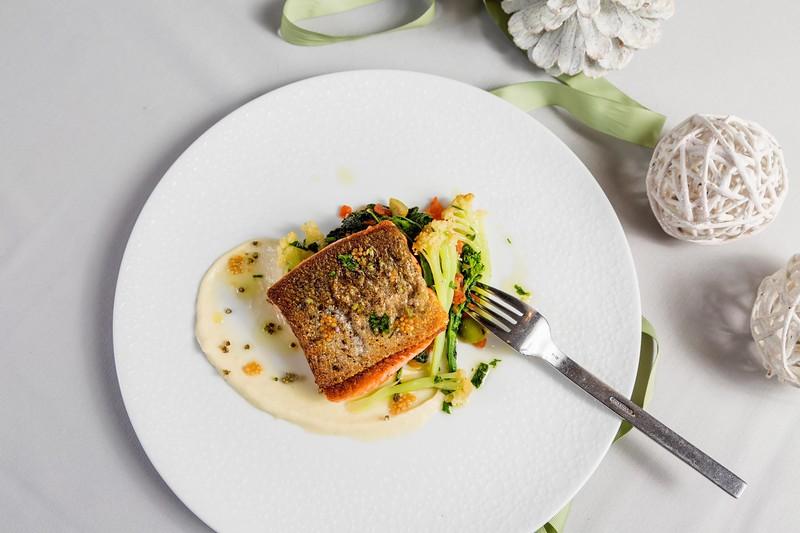 Salmon-24