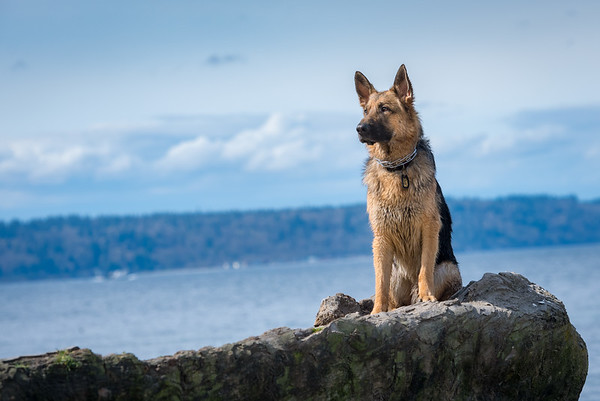 Tohr and Tala at Edwards Point